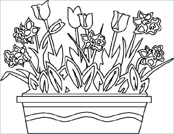 580x446 Summer Flowers Coloring Pages Printable Flower Spring Degree