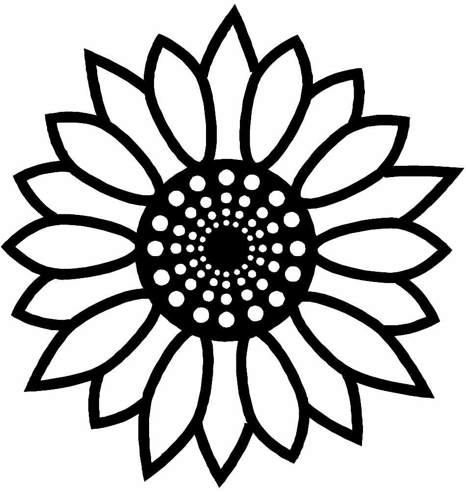 950x1005 Tremendous Summer Flower Coloring Pages Sunflower Printable