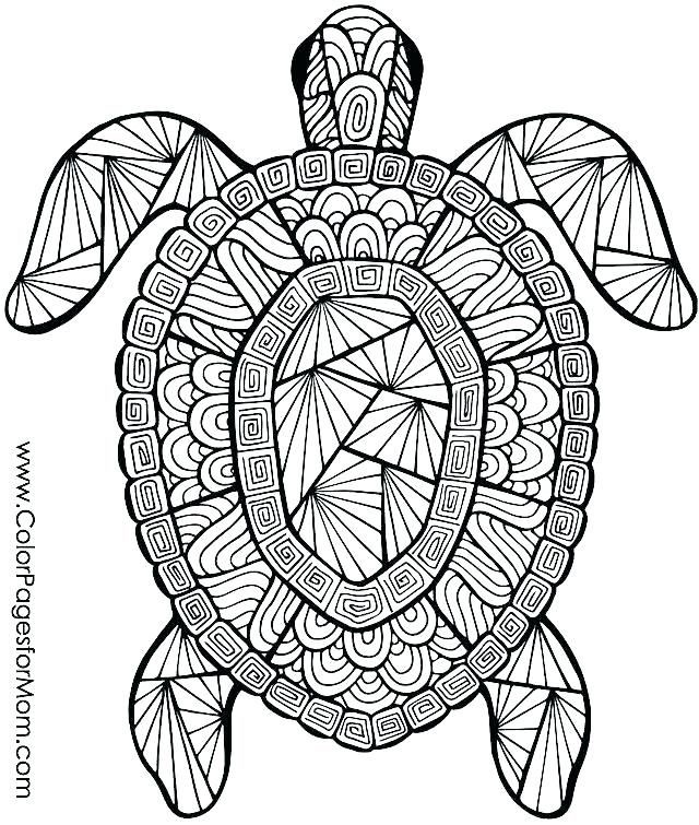 640x755 Free Summer Coloring Sheets Free Printable Summer Olympic Coloring