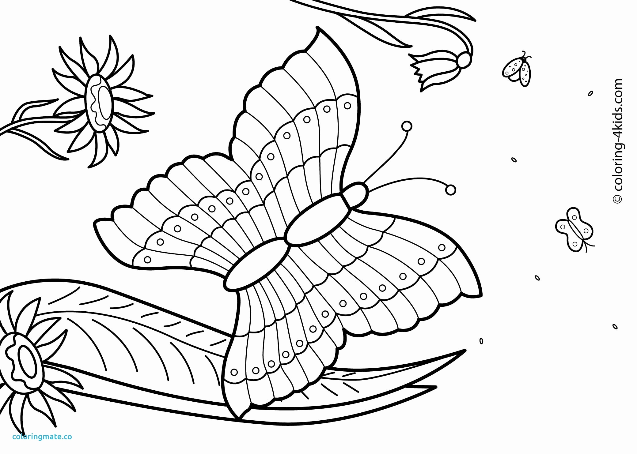 2079x1483 Summer Coloring Pages Free Unique Summer Coloring Pages Pdf New