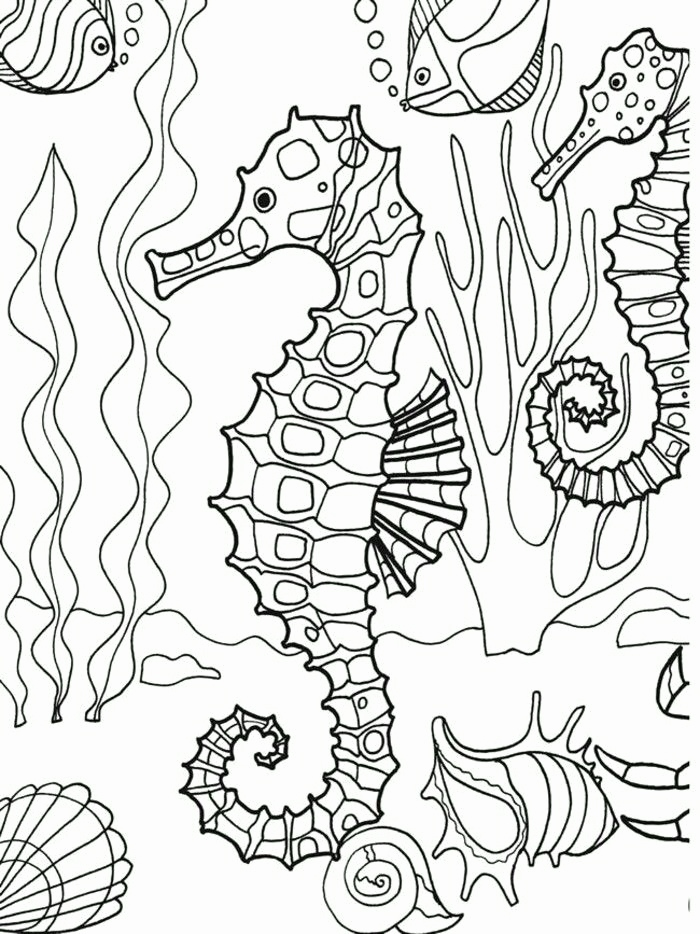700x934 Adult Coloring Pages Beach Image Beach Coloring Pages For Adults