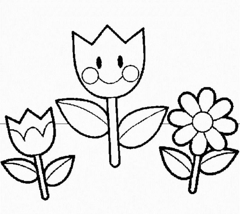 792x708 Preschool Coloring Pages The Sun Flower Pages