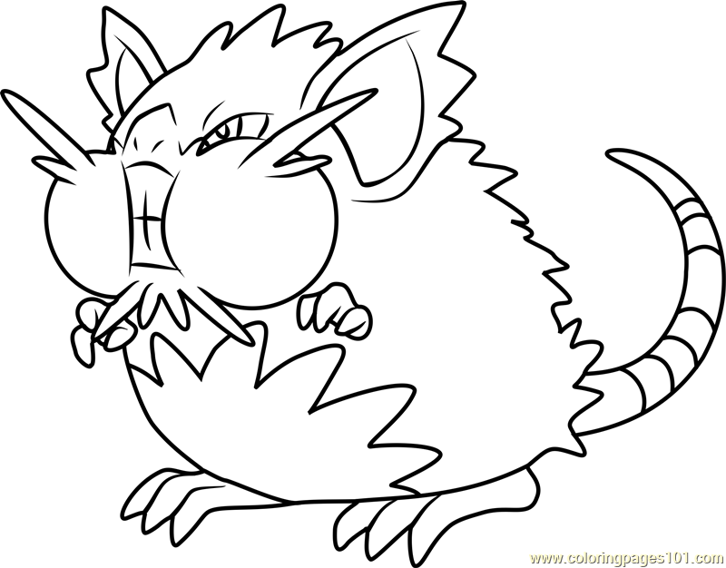 800x626 Alola Raticate Pokemon Sun And Moon Coloring Page