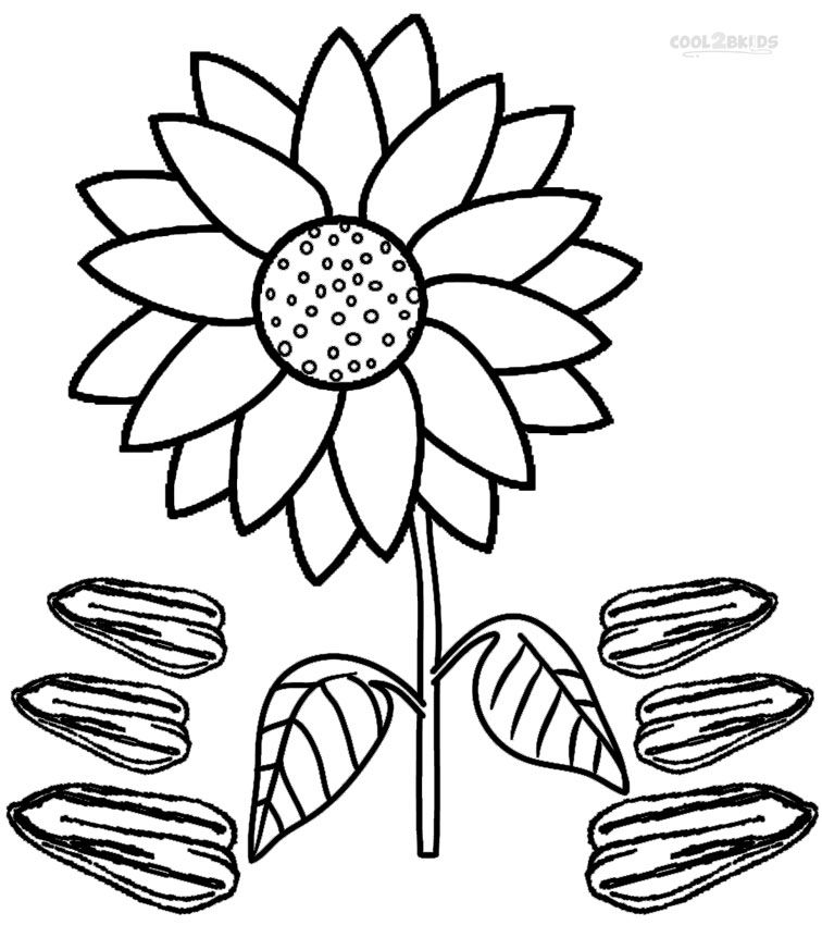 756x850 Printable Sunflower Coloring Pages For Kids Plant