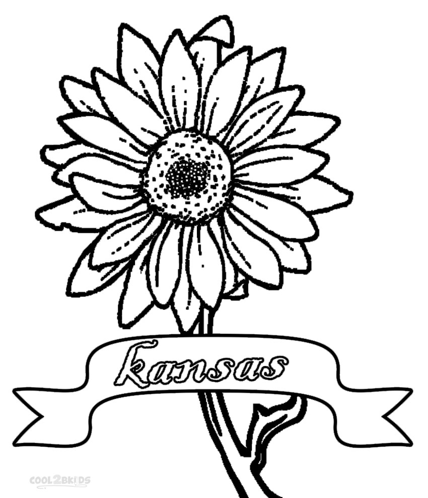 850x988 Printable Sunflower Coloring Pages For Kids