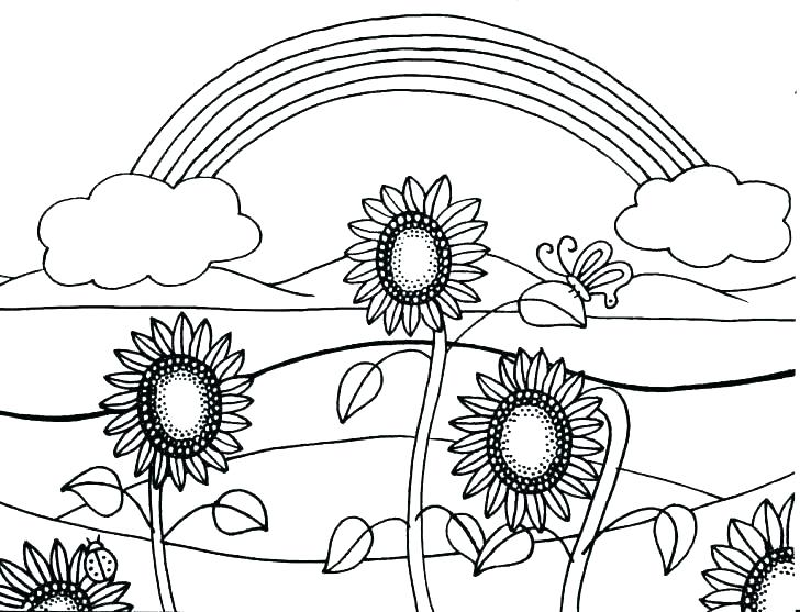 728x557 Sunflower Coloring Pages Color