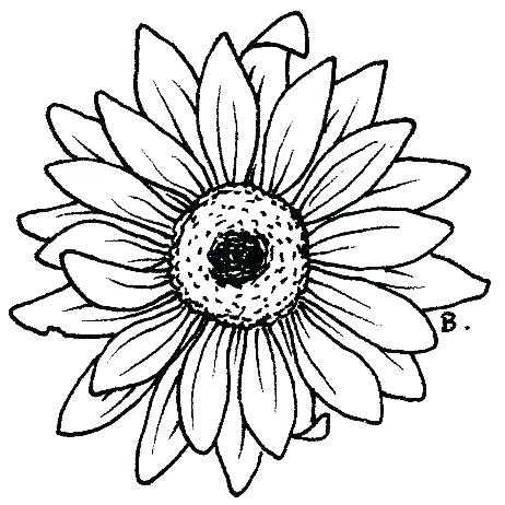 Sunflower Coloring Page at GetDrawings.com | Free for ...