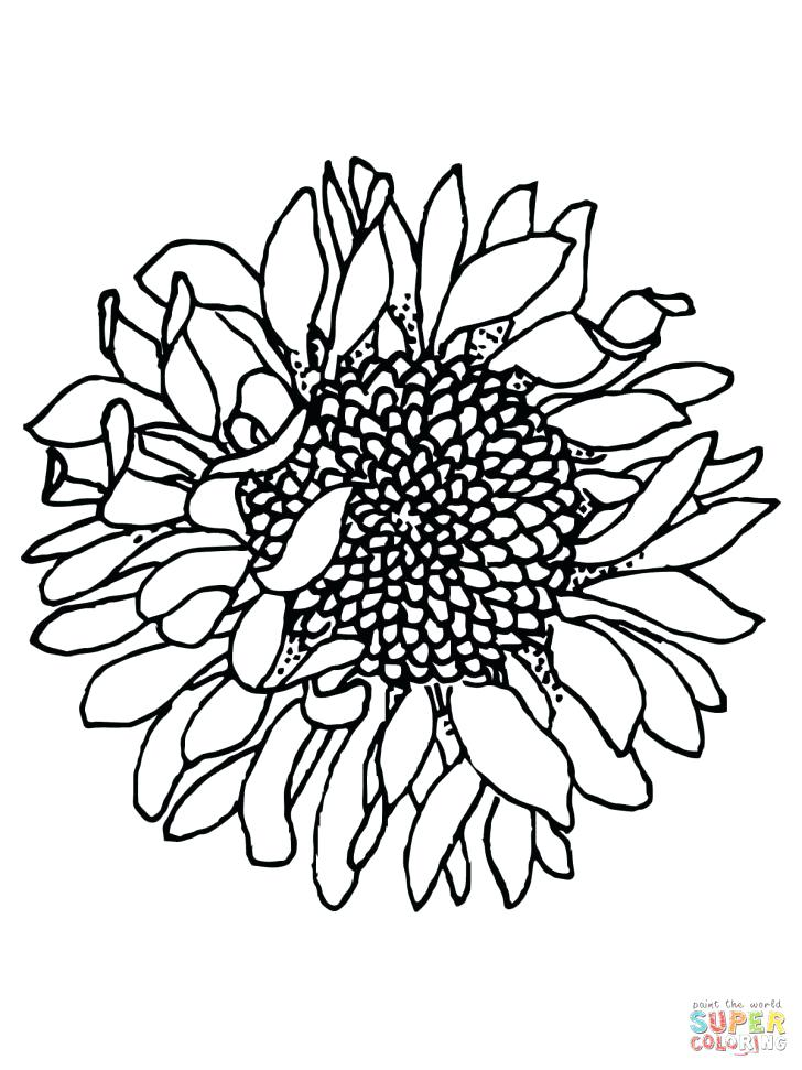 728x971 Little Sunflower Smiling Coloring Page For Kids Flower Coloring