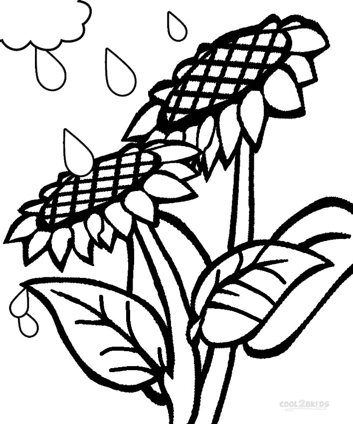 708x850 Printable Sunflower Coloring Pages For Kids