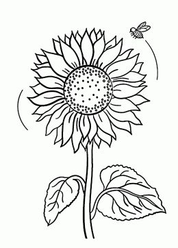 260x362 Best Coloring Book Drawings Images On Coloring