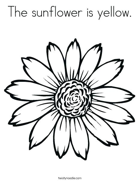 468x605 Sunflower Coloring Sheets Free Coloring Pages For Kids Sunflower