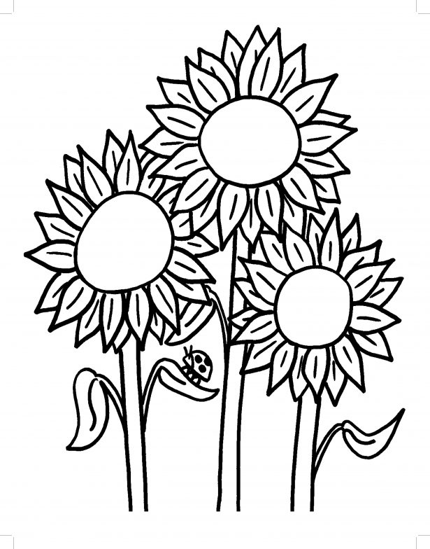615x784 Sunflower Coloring Pages For Kids Coloring Pages Kids Sunflower