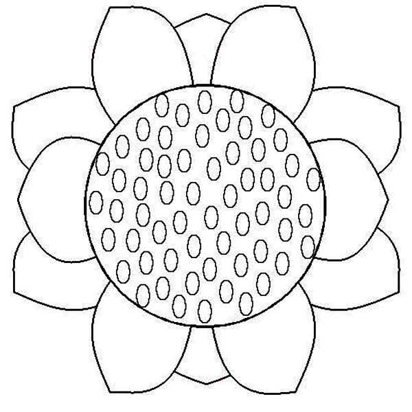 Sunflower Coloring Pages Printable at GetDrawings.com   Free ...