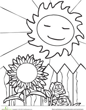 301x382 Sun And Sunflower Worksheet