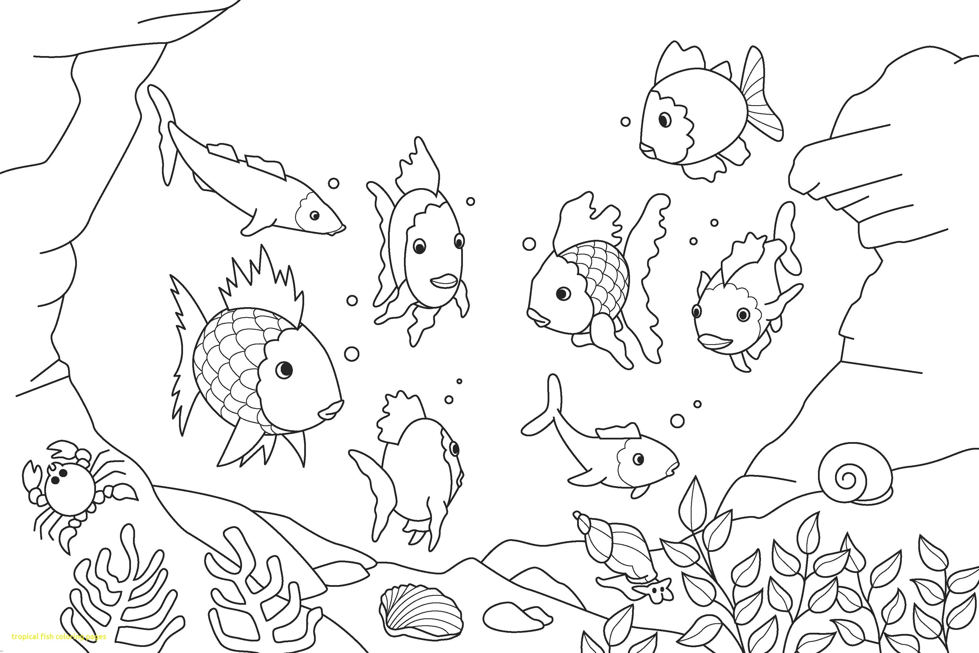 3386x2260 Tropical Coloring Pages To Print