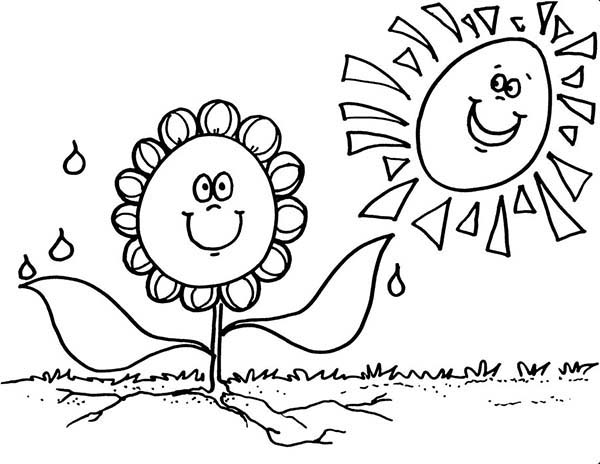 600x464 Spring Flower Really Need Sunshine Coloring Page Color Luna