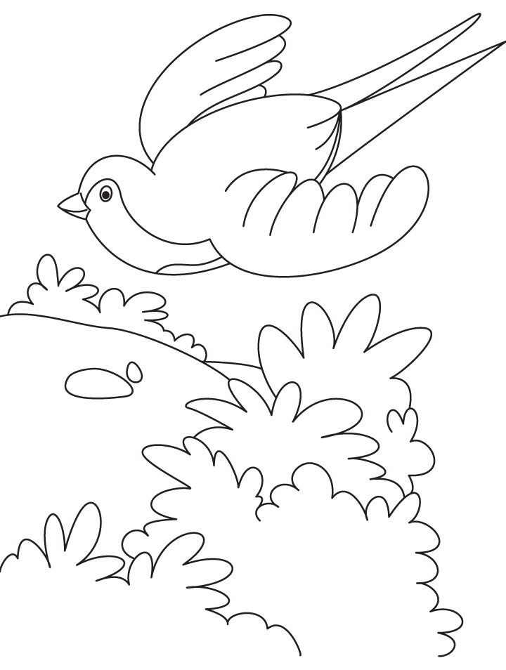 720x954 A Flying Swallow Bird Coloring Page Download Free A Flying Flying