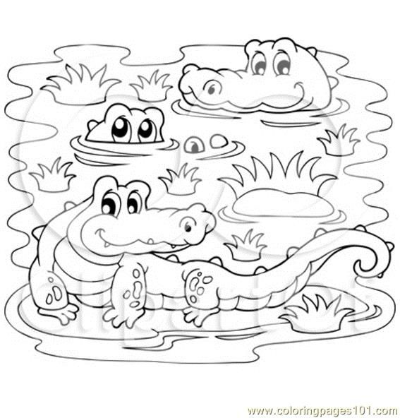 567x592 Crocodiles In A Swamp Coloring Page