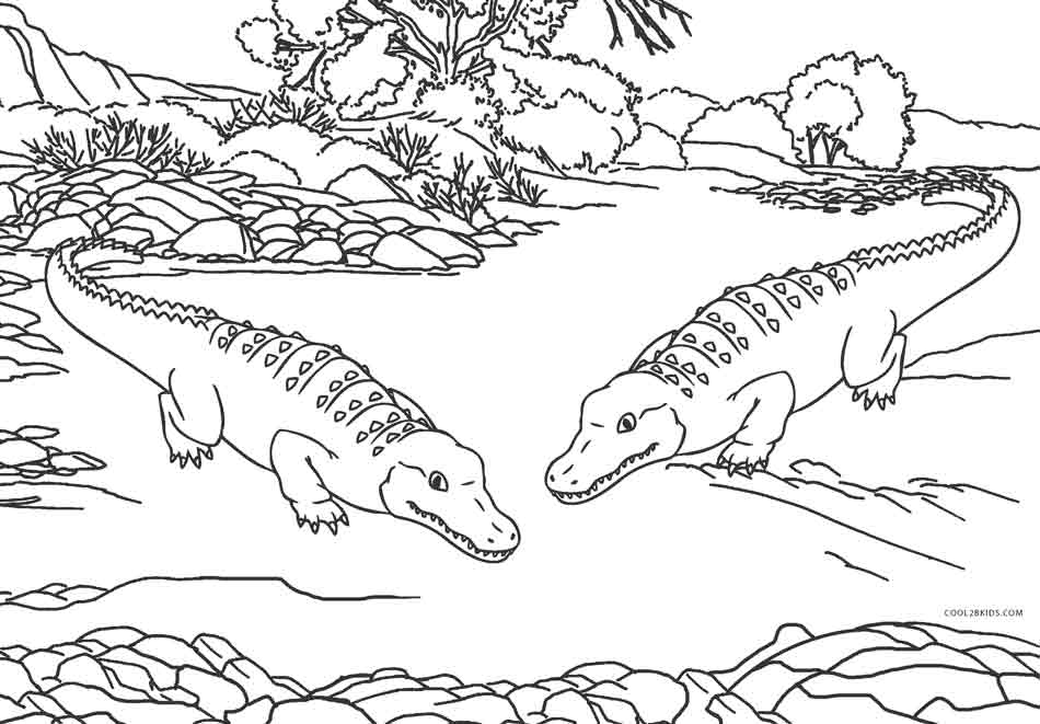 950x661 Free Printable Alligator Coloring Pages For Kids