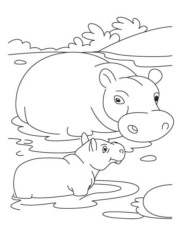 600x776 Mother Hippo And Baby In The Swamp Coloring Page Babies