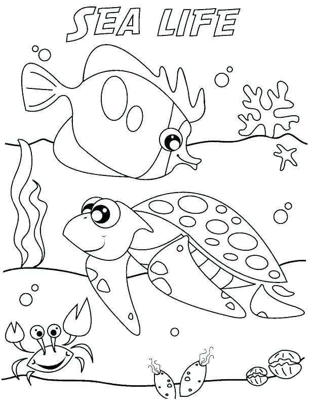 618x811 Animal Habitat Coloring Pages Animal Habitat Coloring Pages Hard