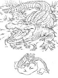 225x300 Louisiana Swamp Coloring Pages