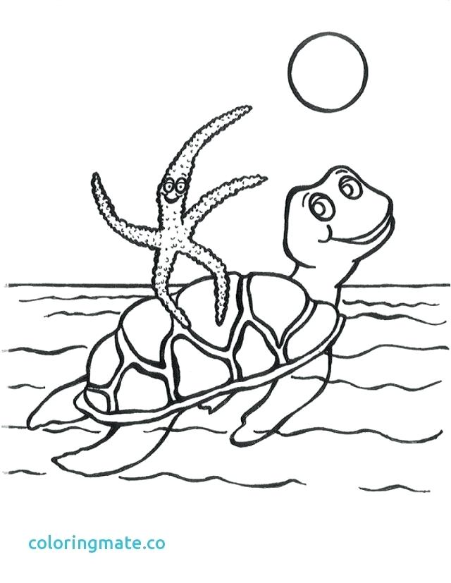 640x827 Swimming Pool Coloring Pages Swimming Coloring Pages New Swimming
