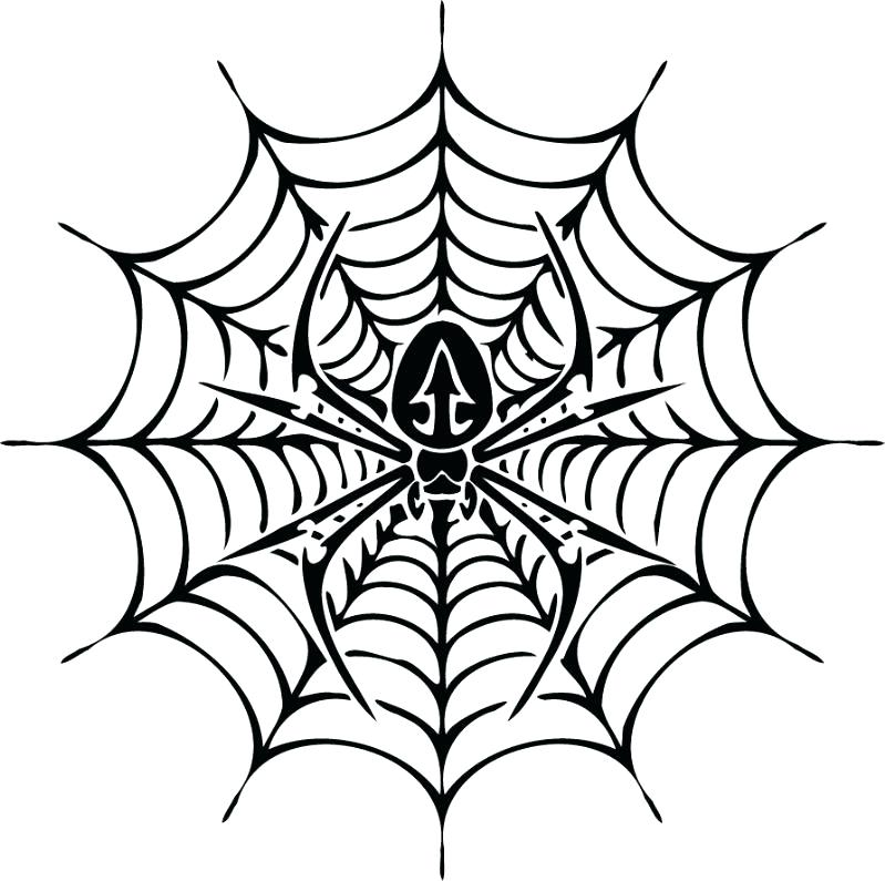 799x795 Symmetry Coloring Sheets Symmetry Coloring Free Printable Spider