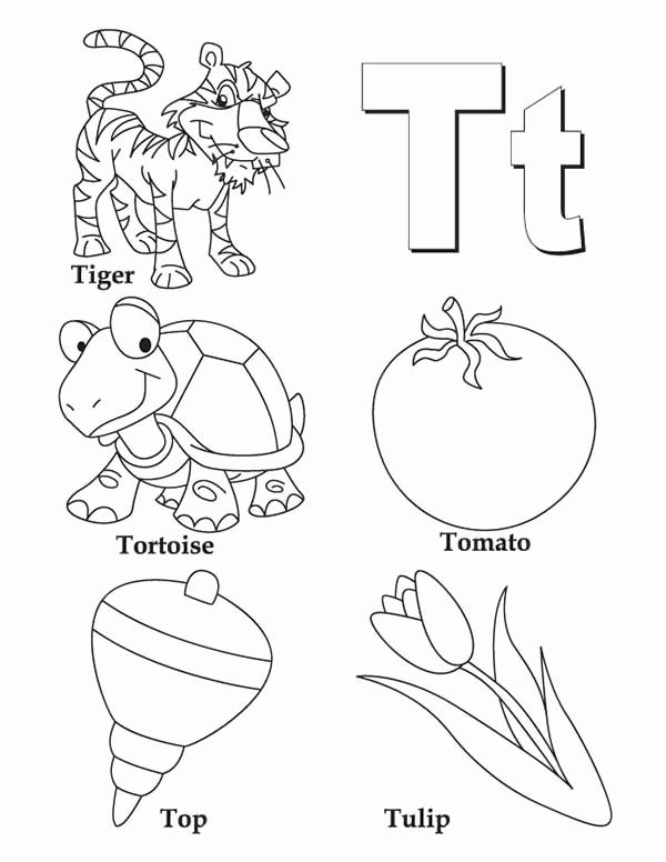 600x776 Letter T Coloring Page Letter U Coloring Pages Preschool