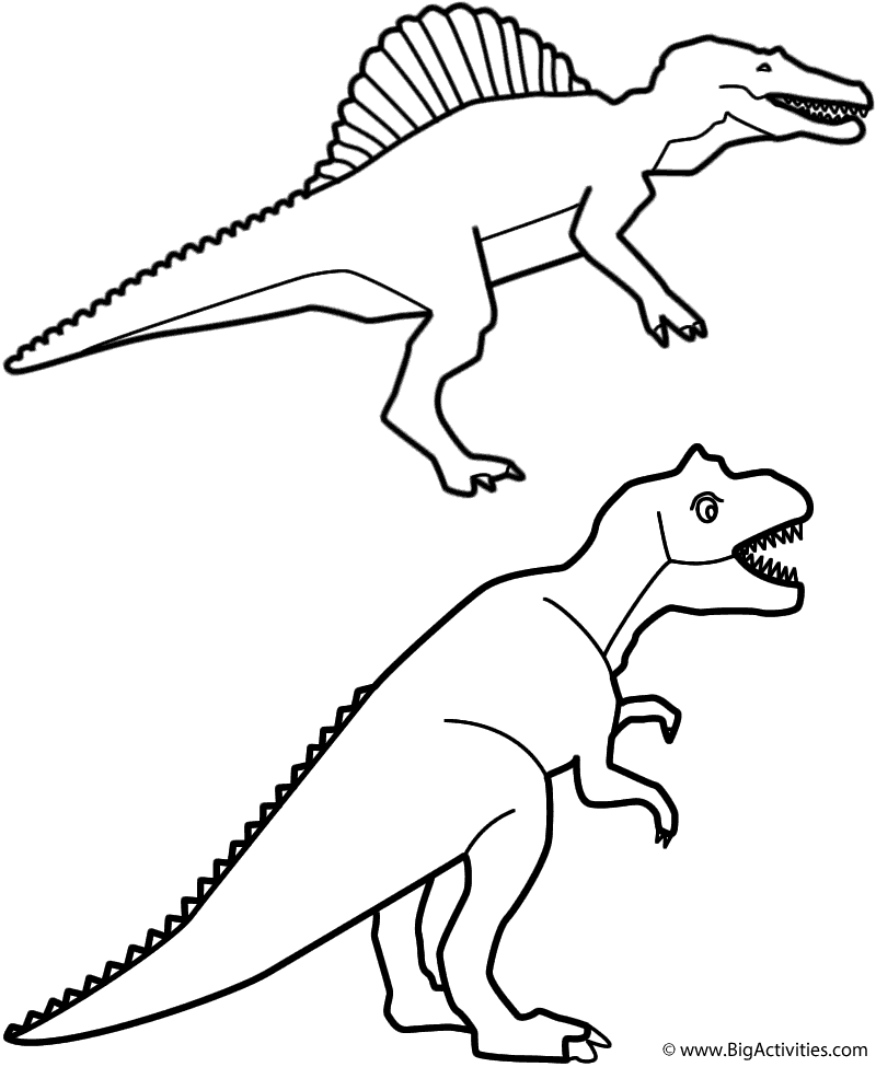 800x975 Spinosaurus And T Rex