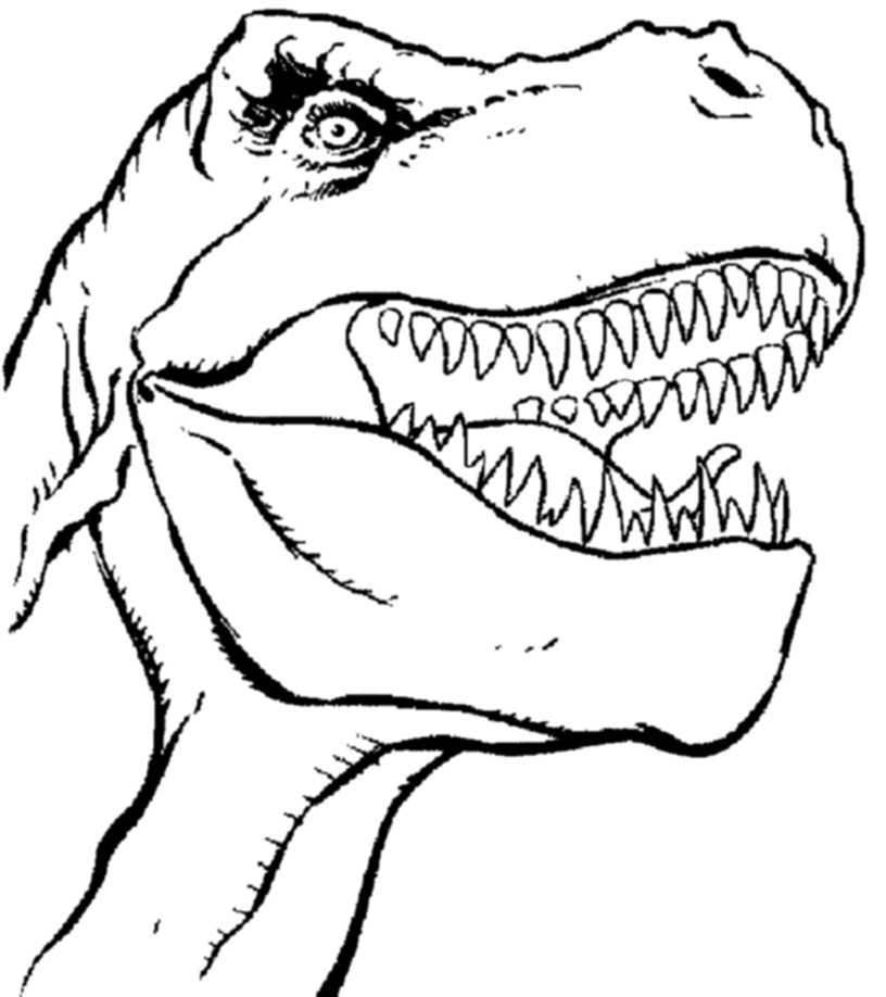 816x918 Ingenious Idea T Rex Coloring Pages Print Download Dinosaur