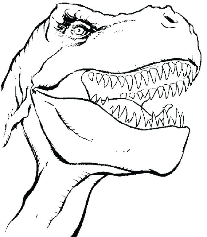 699x800 Free Dinosaur Coloring Pages T Rex Dinosaur Coloring Pages T
