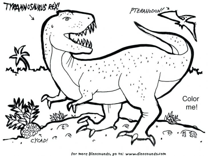 728x546 T Rex Coloring Page Indominus Dinosaur Pages Awesome Amazing
