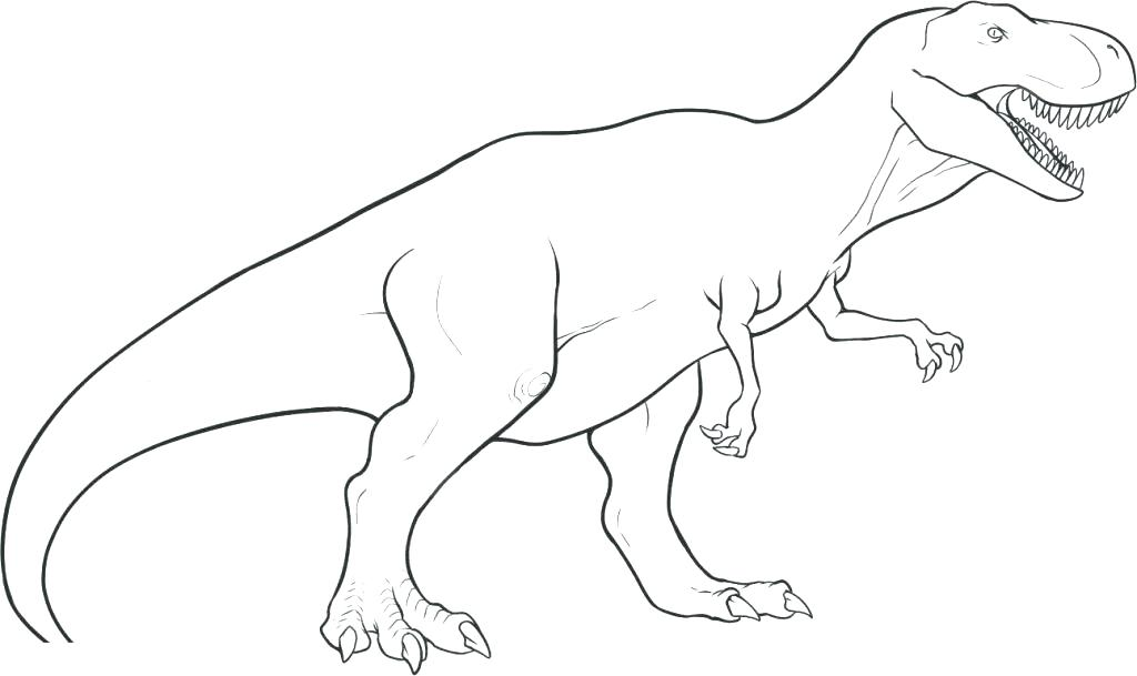 1024x609 Tyrannosaurus Coloring Page Free T Dinosaur Coloring Pages Park