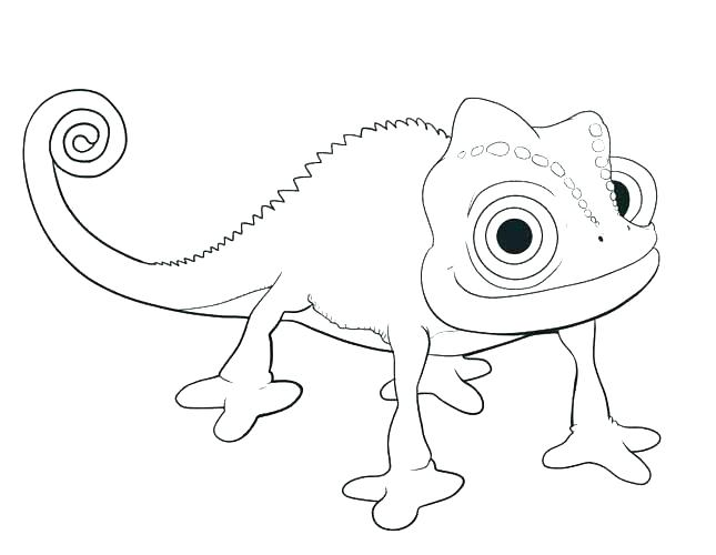 645x500 Tangled Color Pages Pascal Coloring Page Fresh