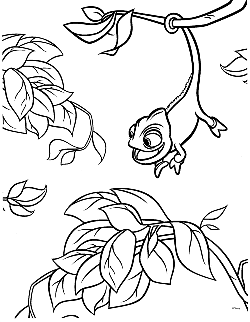 500x644 Tangled Pascal Coloring Pages
