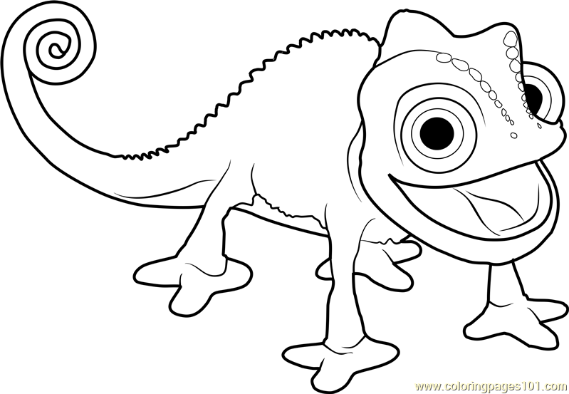 799x553 Pascal The Chameleon Coloring Page