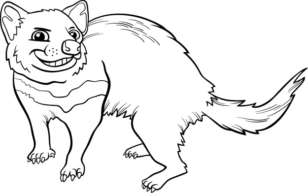 625x392 Tasmanian Devil Cartoon Coloring Page Vector Premium Download