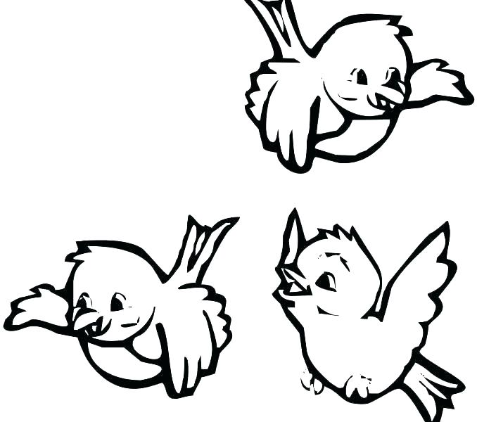 678x600 Birds Coloring Book Bird Coloring Pages Bird Colouring Book