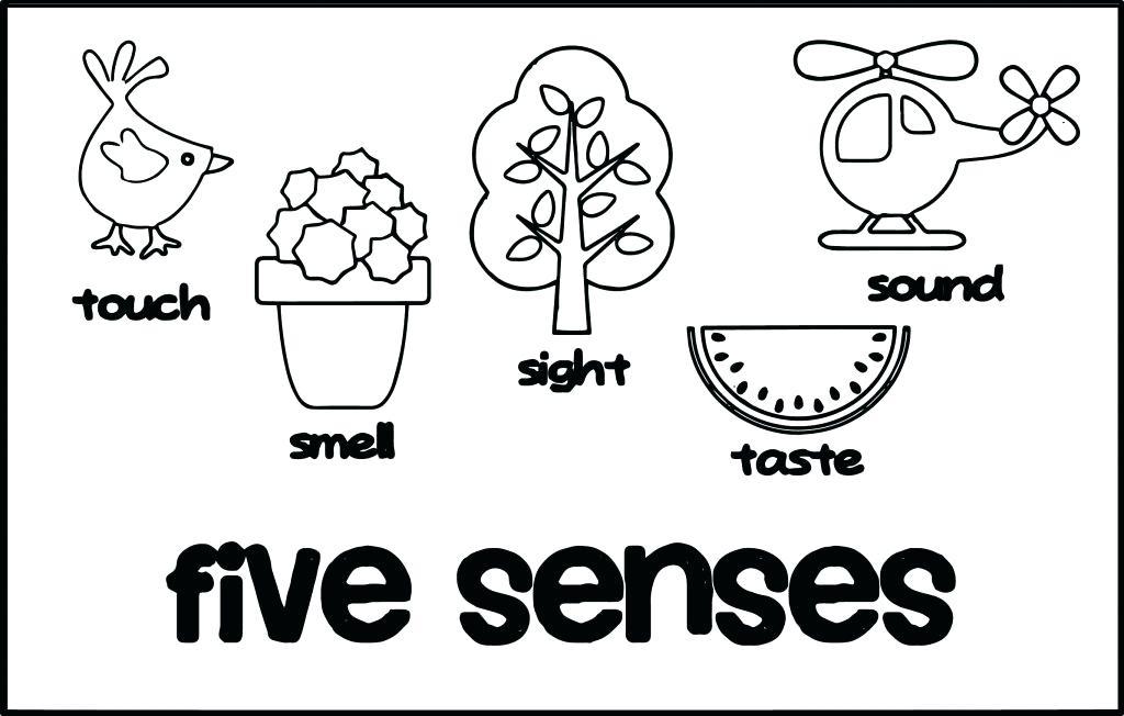 1024x652 Five Senses Coloring Pages Five Senses Coloring Page Senses