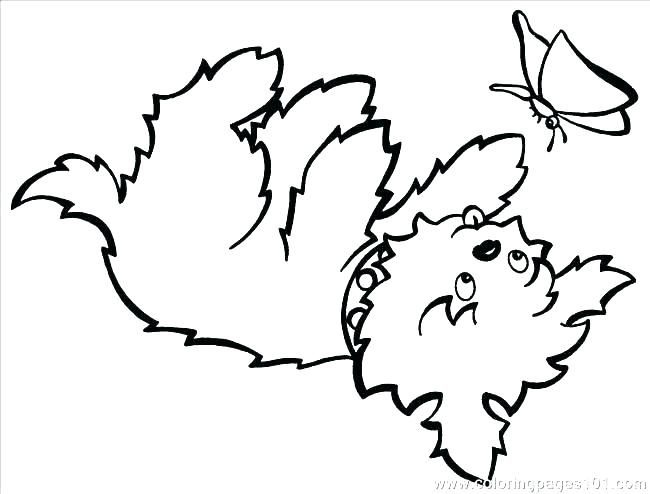 650x494 Yorkie Color Pages Coloring Page Teacup Coloring Pages Coloring