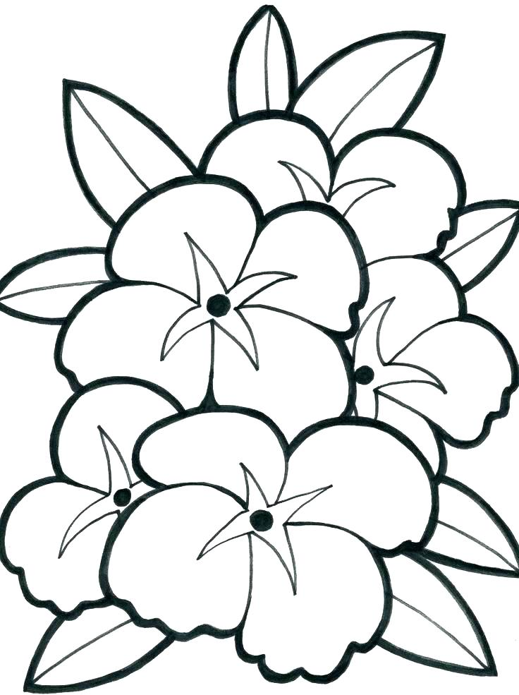 736x985 Coloring Pages For Teenagers Coloring Pages For Teens Printable