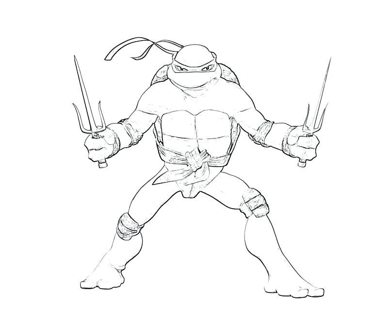800x667 Teenage Mutant Ninja Turtles Coloring Pages Leonardo Ninja