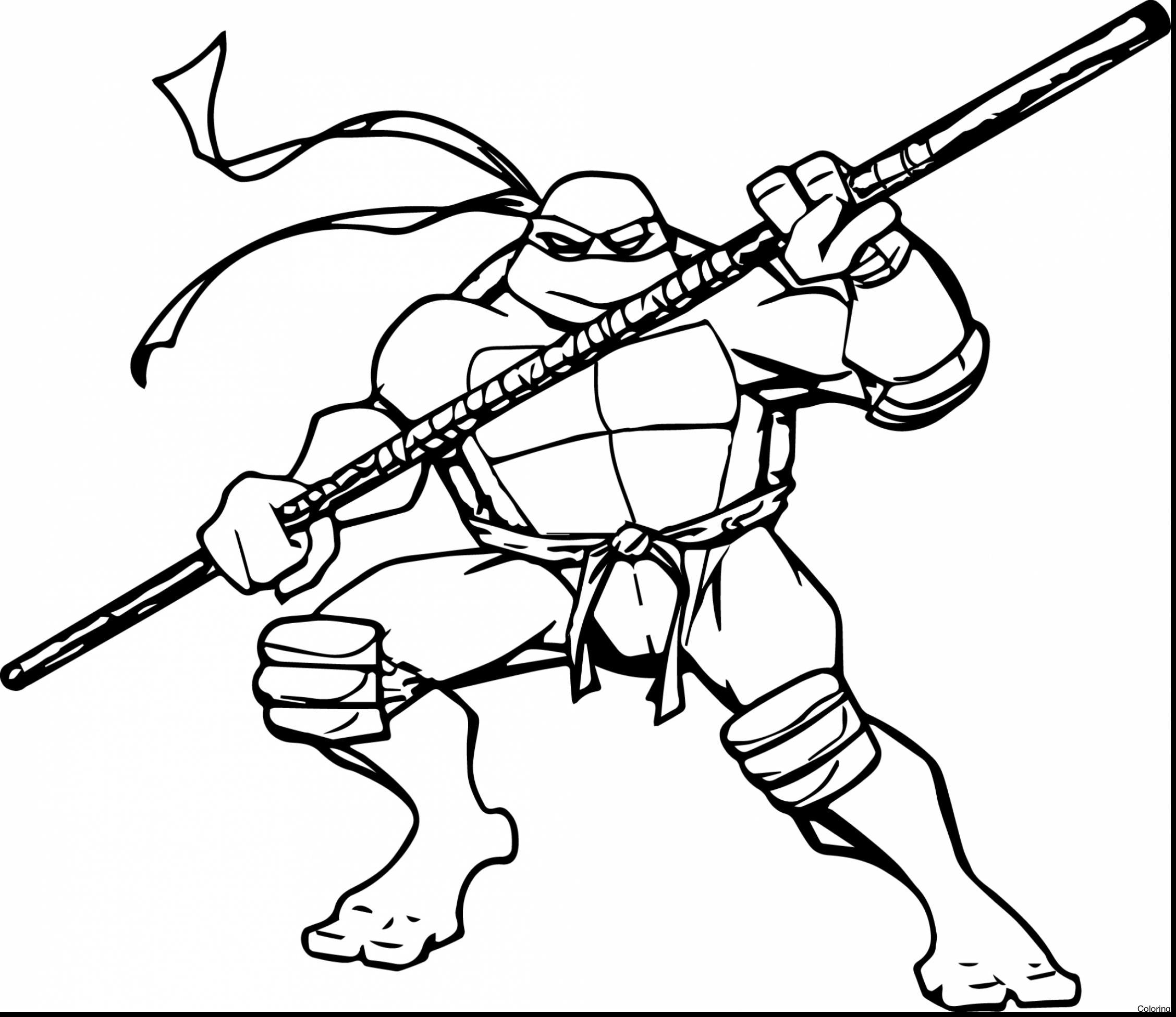 2256x1952 Ninja Turtle Coloring Pages Michelangelo Inspiration Mutant Turtle