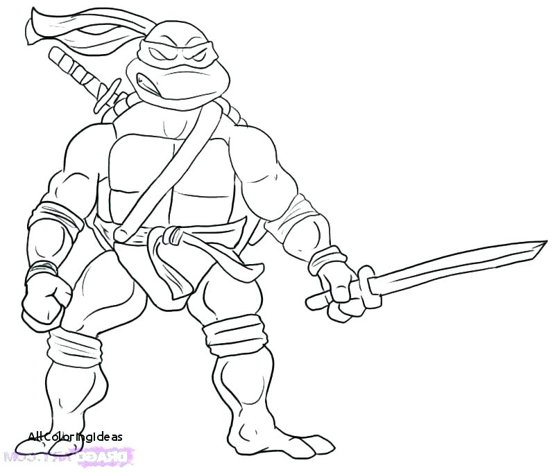 800x681 Michelangelo Ninja Turtle Coloring Page Teenage Mutant Ninja