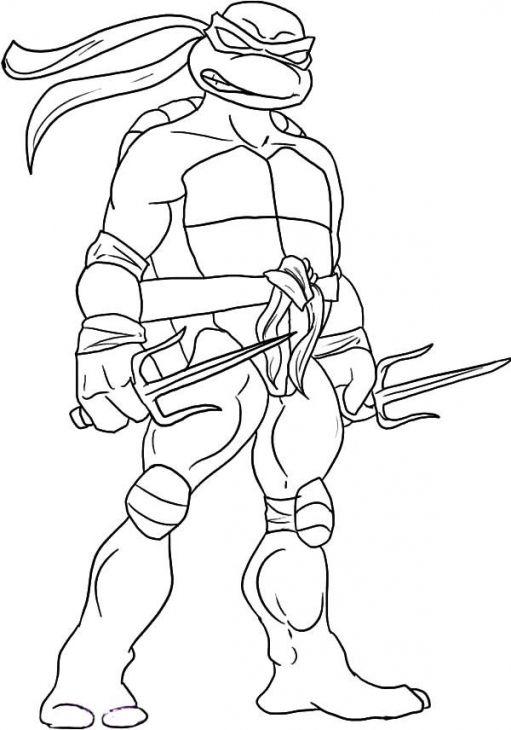 511x730 Teenage Mutant Ninja Turtles Raphael Coloring Pages Free Tmnt