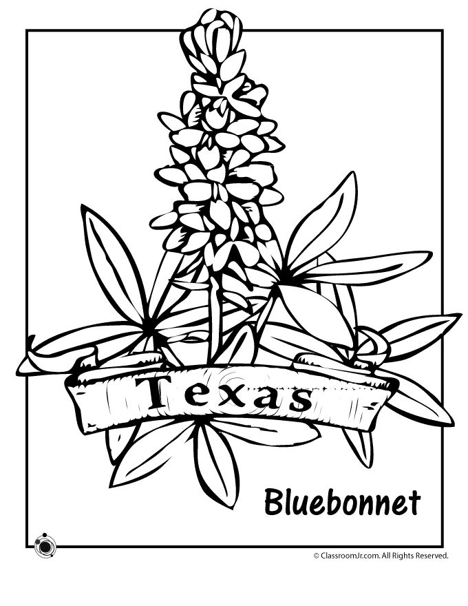 Texas Coloring Pages Printable