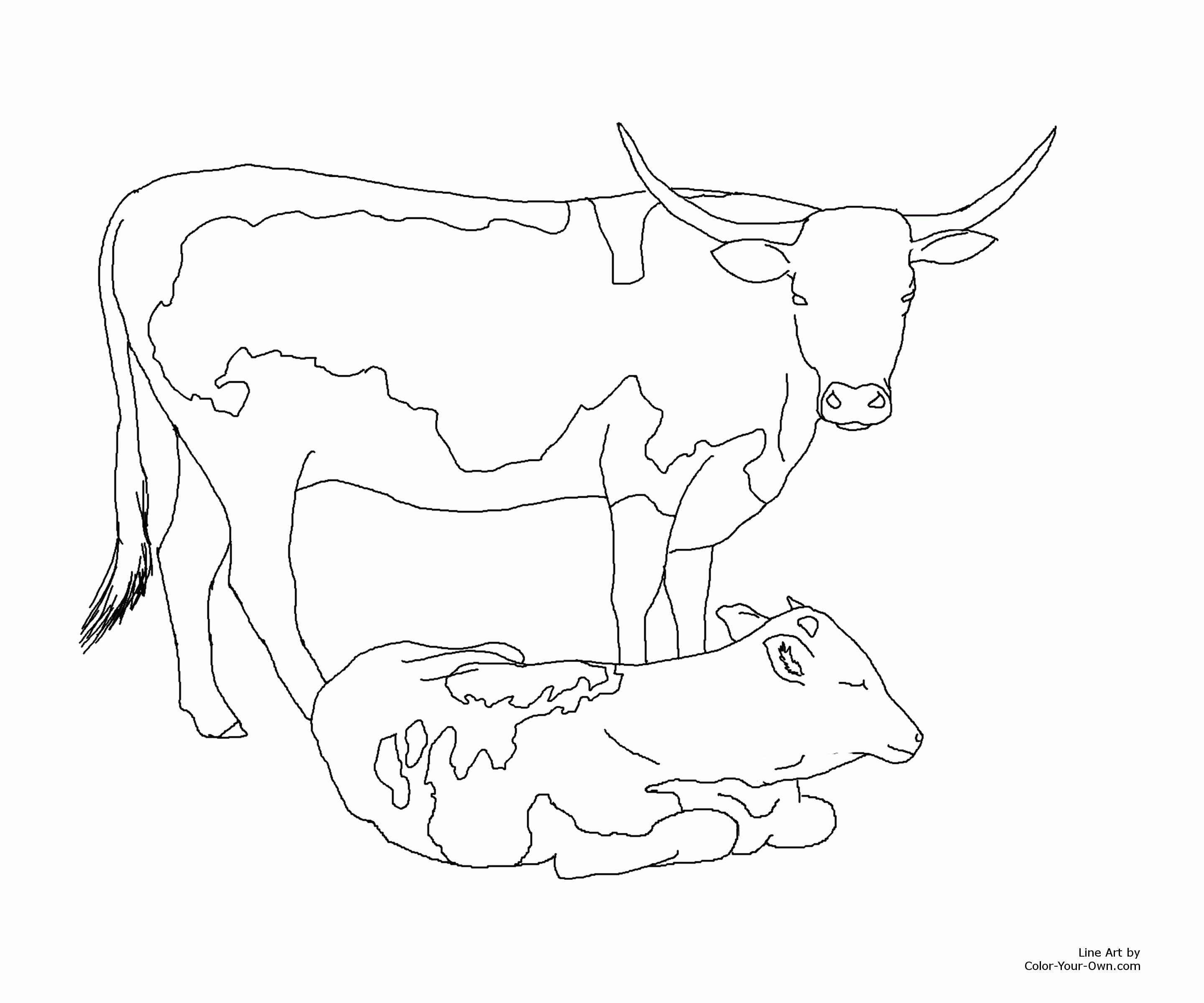 2880x2400 New Longhorn Coloring Pages Gallery Printable Coloring Sheet