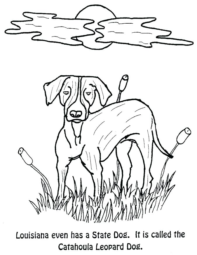 675x874 Coloring Page Idea Coloring Pages For State Symbols Coloring
