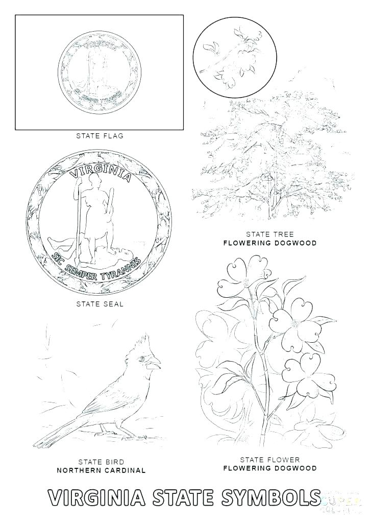 725x1024 State Symbols Coloring Pages United States Symbols Coloring State